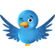 Twitter Telefonsex